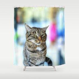 koko the cat blurry orig Shower Curtain