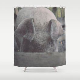 Pig in Oconaluftee Shower Curtain