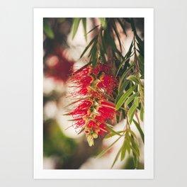 May flowers I Art Print