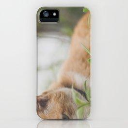 Half a Cat iPhone Case
