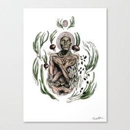 Onion mummy Canvas Print