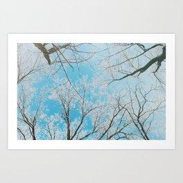 April Winters Bring Me... Photo Ops Art Print