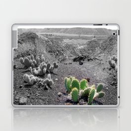 Green Cactus Laptop & iPad Skin
