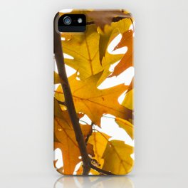 Golden oak leaves iPhone Case
