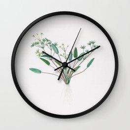 Vintage Starfruit Illustration Wall Clock