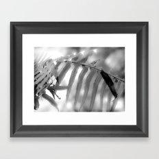 Fernly Framed Art Print