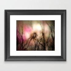 Shimmering Pink Framed Art Print