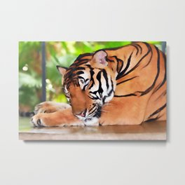 Sleeping Tiger Metal Print
