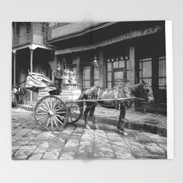 New Orleans milk cart Throw Blanket