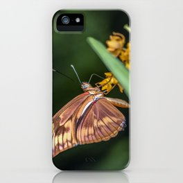 Butterfly on a flower iPhone Case