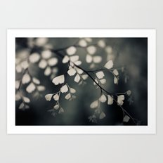 Delicate Leaves Art Print