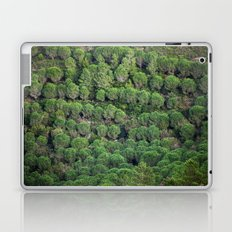 Young pine forest 6809 Laptop & iPad Skin