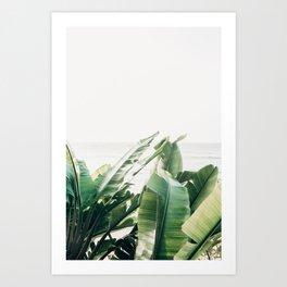 Pretty Palms Art Print