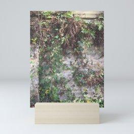 Climbing Ivy in Savannah Mini Art Print