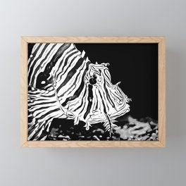 poisonous exotic lionfish vabw Framed Mini Art Print
