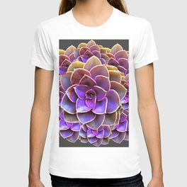 PURPLE-CREAM SUCCULENT ROSETTES T-shirt