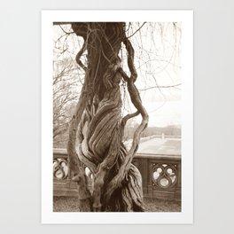 Beautifully Twisted Art Print