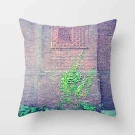 Inscribed in Time Throw Pillow