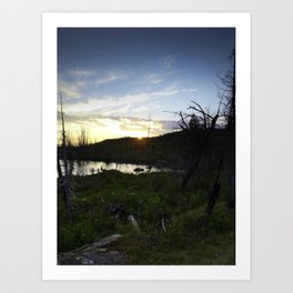 Blueberry Sunset Art Print