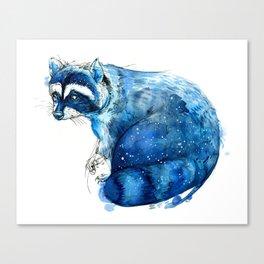 Starry Raccon Canvas Print