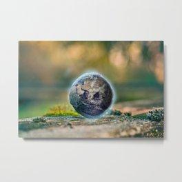 Little Earth Metal Print