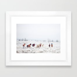 Winter Horses Framed Art Print