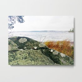 Origami cranes on the rock with lake view Metal Print