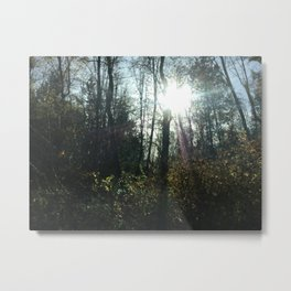 Natural Forest XD Metal Print
