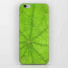 Green Leaf Veins 03 iPhone & iPod Skin