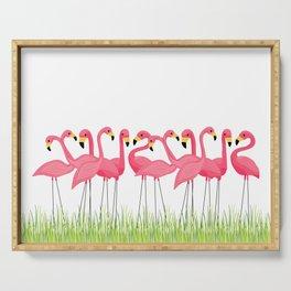 Cuban Pink Flamingos Serving Tray