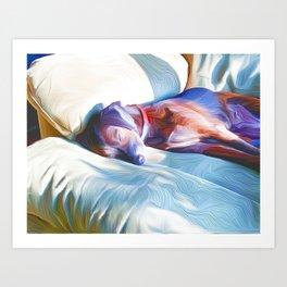 Sleeping in the Sun on a Chair Art Print