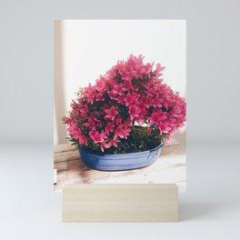 Pink flowered bonsai  Mini Art Print