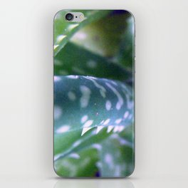 Bug's Eye View, Aloe iPhone Skin