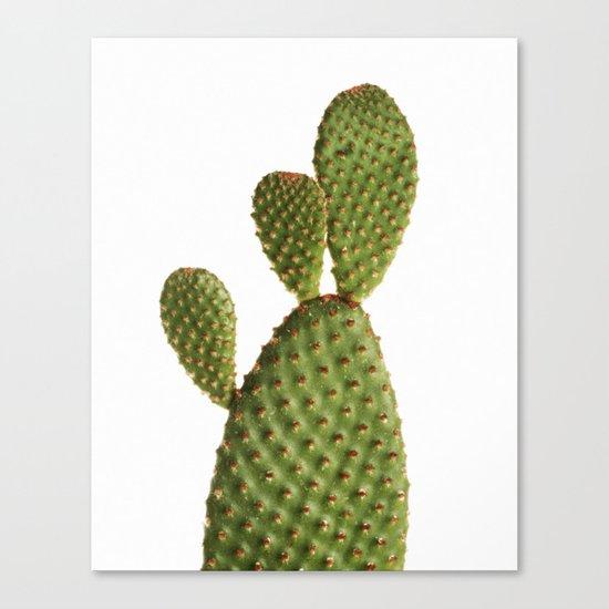 Minimal Cactus - Cacti Canvas Print