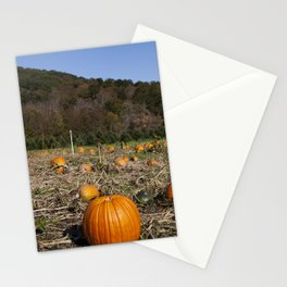 Pumpkin patch near Litchfield Connecticut Stationery Cards