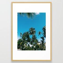 Jacmel Palms Framed Art Print