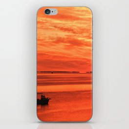 Early Bird Gets the Crab iPhone Skin