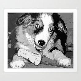 australian shepherd aussie dog puppy vector art black white Art Print