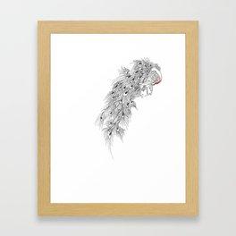Peacock II Framed Art Print