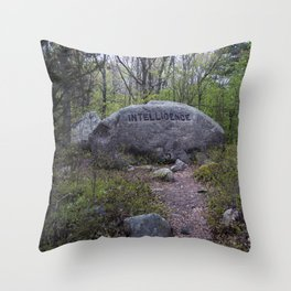 Path to Intelligence Babson Boulder #10 Intelligence Rock Throw Pillow