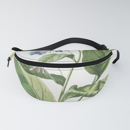 Plantae Selectae No. 42 Pulmonaria or Lungworts by Georg Dionysius Ehret Fanny Pack