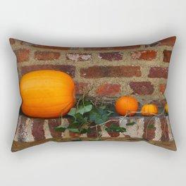 Gourds On A Windowsill Rectangular Pillow