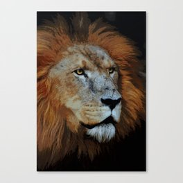 The Lion of Judah Canvas Print
