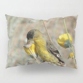 Mr. Lesser Goldfinch Feeds on Seeds Pillow Sham