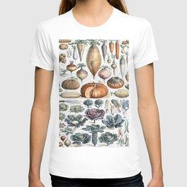 Legumes Par Adolphe Millot T-shirt