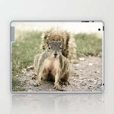 Startled Laptop & iPad Skin
