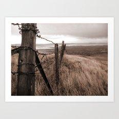 Worn fence Art Print