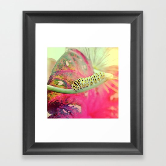 It's not a butterfly yet! Framed Art Print