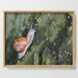 Snail 1 Serving Tray
