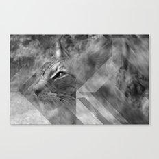 Broken Lynx Canvas Print